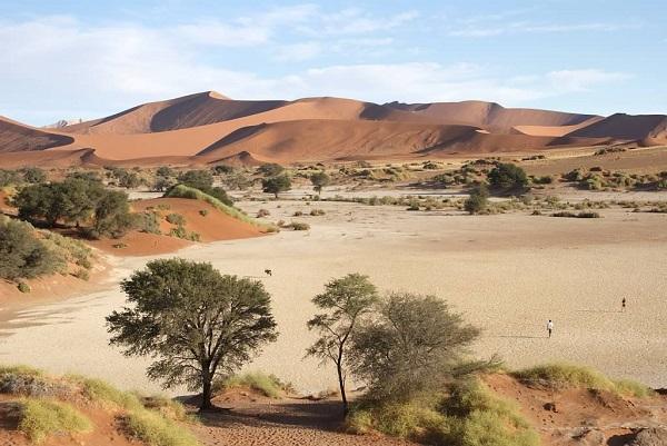 15 days - Etosha Darmaraland Sossusvlei