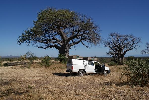 21 days - Etosha Kaokaland Himba Sossusvlei